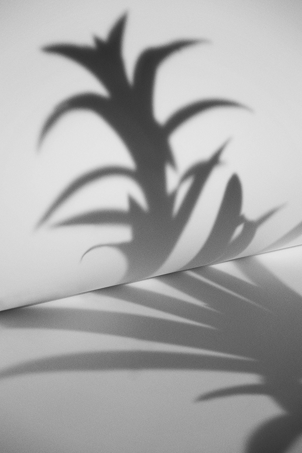 Ana_Dominguez_SHADOWS_3