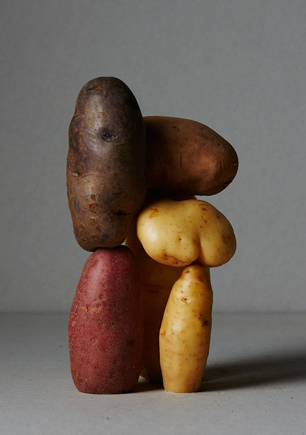 Ana_Dominguez_POTATOES_5